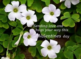 Valentines Valentines love hugs luck green growth flower white plant personalised online greeting card
