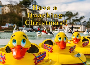 Christmas Xmas, Christmas, andbc, ducks, boats, water, cute, children,  fun, playground, Bangor, Northern Ireland,  personalised online greeting card