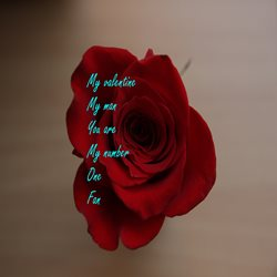 Valentines for-him ,red, roses, love, happy personalised online greeting card