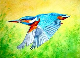 General artwork kingfisher birds wildlife for-her for-him personalised online greeting card