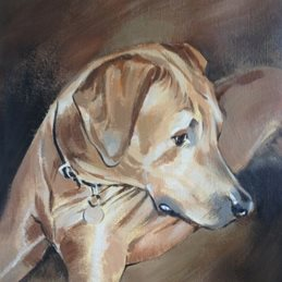fineart dog portrait fine art acrylic painting dogs personalised online greeting card