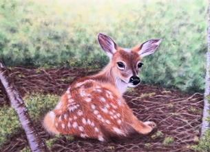 art deer fawn animal wildlife nature art personalised online greeting card