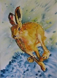 art  greeting cards by Summerhouse Studio Running Hare, Wild Life, Countryside, rabbit, abstract,  animals The Chaser