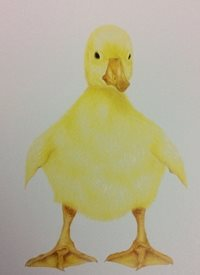 Art By Hannah Duckling Art easter  Duckling happy Easter animals birds thank you cute  personalised online greeting card