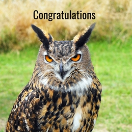 Congratulations Owl personalised online greeting card