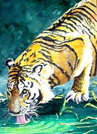 general artwork tiger animals zoo wildlife water for-him for-her personalised online greeting card