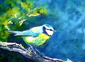 art artwork tit birds  wildlife for-him for-her personalised online greeting card