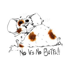 Lynn Adams Illustration No Ifs - No Butts General guinea pig animal cute funny cartoon  personalised online greeting card