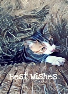 birthday Cat, kitten, best, wishes, barn, hay, golden, curious, hiding, tabby, brown, young BEST WISHES, her,  personalised online greeting card