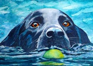 art artwork dog animals pets for-her for-him personalised online greeting card