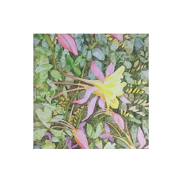 Floral/ birthday/ get well/female personalised online greeting card