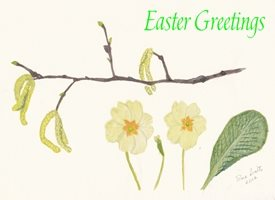 Easter Primroses Pussy Willow Spring Flowers    personalised online greeting card