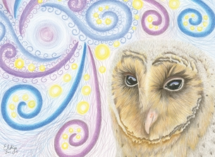 Elkie Wild Art The Stargazer art general stargazer, barn owl, owl, black barn owl, for her, for him, birthday, mothers day, easter, fathers day, sympathy, sorry personalised online greeting card