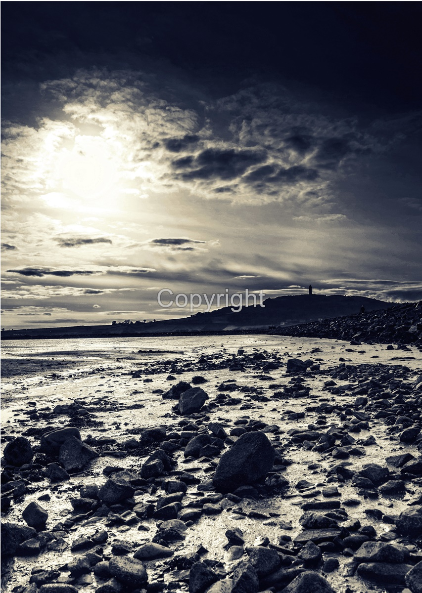 Scrabo Evening Monochrome